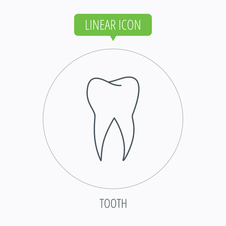 stomatology: Tooth icon. Dental stomatology sign. Dentistry symbol. Linear outline circle button. Vector Illustration