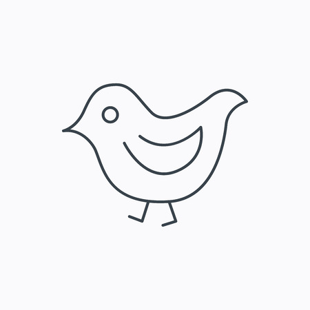 beak: Bird icon. Chick with beak sign. Fowl with wings symbol. Linear outline icon on white background. Vector