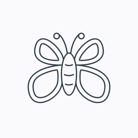 lepidoptera: Butterfly icon. Flying lepidoptera sign. Dreaming symbol. Linear outline icon on white background. Vector