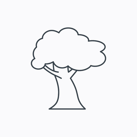 coma: Oak tree icon. Forest wood sign. Nature environment symbol. Linear outline icon on white background. Vector Illustration