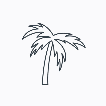 Palm tree icon. Travel or vacation symbol. Nature environment sign. Linear outline icon on white background. Vector