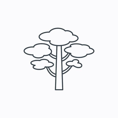 Pine tree icon. Forest wood sign. Nature environment symbol. Linear outline icon on white background. Vector