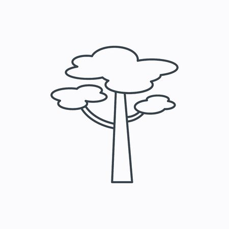 coma: Pine tree icon. Forest wood sign. Nature environment symbol. Linear outline icon on white background. Vector