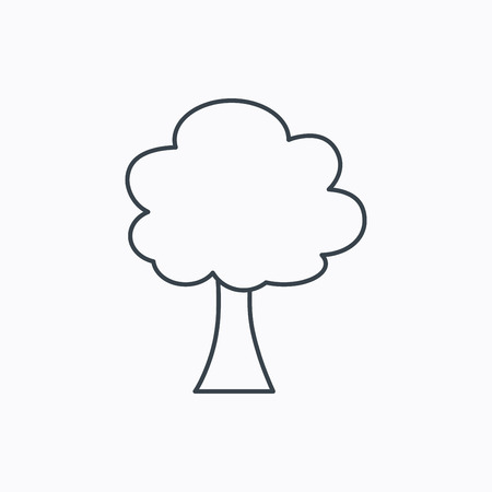 coma: Tree icon. Forest wood sign. Nature environment symbol. Linear outline icon on white background. Vector