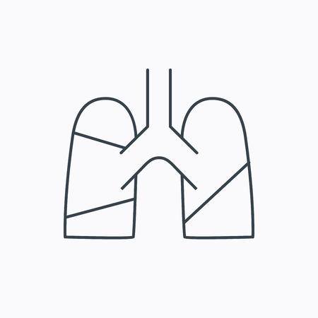 transplantation: Lungen-Symbol. Transplantation Orgel Zeichen. Pulmologie Symbol. Linear Umriss-Symbol auf wei�em Hintergrund. Vector