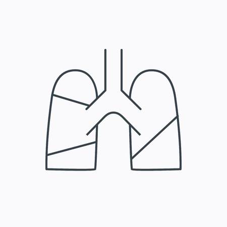 pulmology: Lungs icon. Transplantation organ sign. Pulmology symbol. Linear outline icon on white background. Vector
