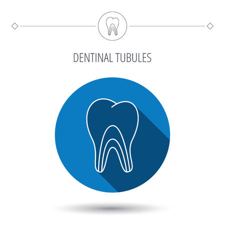 pulpitis: Dentinal tubules icon. Tooth medicine sign. Blue flat circle button. Linear icon with shadow. Vector