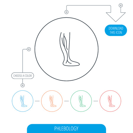 varicose veins: Phlebology icon. Leg veins sign. Varicose or thrombosis symbol. Line circle buttons. Download arrow symbol. Vector