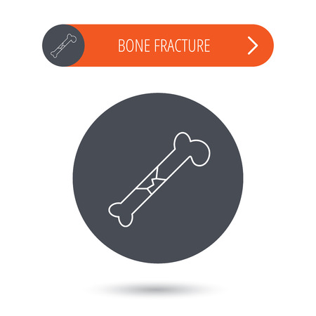 osteo: Bone fracture icon. Traumatology sign. Human bone break. Gray flat circle button. Orange button with arrow. Vector Illustration