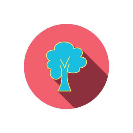 coma: Maple tree icon. Forest wood sign. Nature environment symbol. Red flat circle button. Linear icon with shadow. Vector