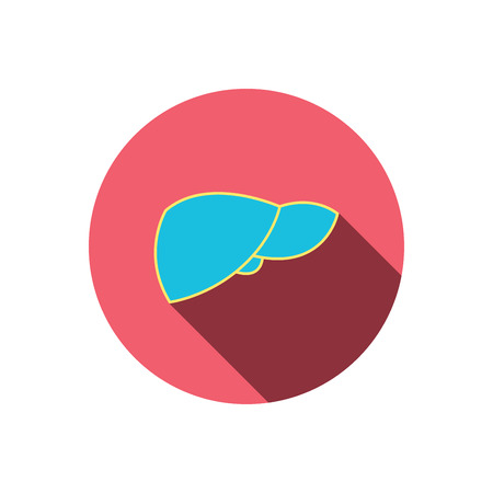 liver failure: Liver icon. Transplantation organ sign. Medical hepathology symbol. Red flat circle button. Linear icon with shadow. Vector Illustration
