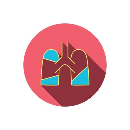 pulmology: Lungs icon. Transplantation organ sign. Pulmology symbol. Red flat circle button. Linear icon with shadow. Vector