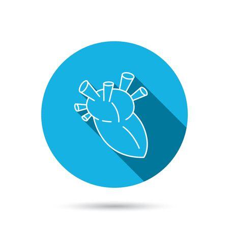 transplantation: Heart icon. Human organ sign. Surgical transplantation symbol. Blue flat circle button with shadow. Vector