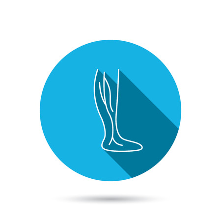 varicose veins: Phlebology icon. Leg veins sign. Varicose or thrombosis symbol. Blue flat circle button with shadow. Vector