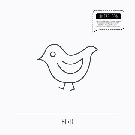 beak: Bird icon. Chick with beak sign. Fowl with wings symbol. Linear outline icon. Speech bubble of dotted line. Vector Illustration
