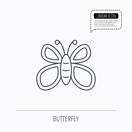 lepidoptera: Butterfly icon. Flying lepidoptera sign. Dreaming symbol. Linear outline icon. Speech bubble of dotted line. Vector