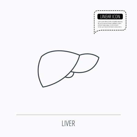 Liver icon. Transplantation organ sign. Medical hepathology symbol. Linear outline icon. Speech bubble of dotted line. Vector