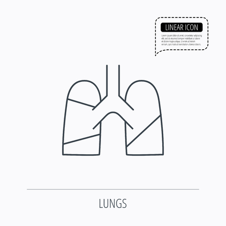 pulmology: Lungs icon. Transplantation organ sign. Pulmology symbol. Linear outline icon. Speech bubble of dotted line. Vector Illustration
