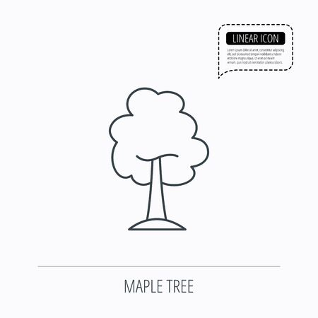 coma: Maple tree icon. Forest wood sign. Nature environment symbol. Linear outline icon. Speech bubble of dotted line. Vector Illustration