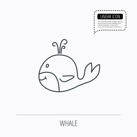 cetacea: Whale icon. Largest mammal animal sign. Baleen whale with fountain symbol. Linear outline icon. Speech bubble of dotted line. Vector