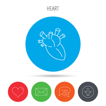 transplantation: Heart icon. Human organ sign. Surgical transplantation symbol. Mail, download and speech bubble buttons. Like symbol. Vector