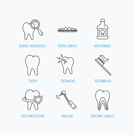 tubules: Tooth, dental braces and mouthwash icons. Diagnostics, toothbrush and toothache linear signs. Dentinal tubules, protection flat line icons. Linear set icons on white background.