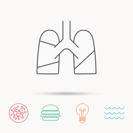 pulmology: Lungs icon. Transplantation organ sign. Pulmology symbol. Global connect network, ocean wave and burger icons. Lightbulb lamp symbol.