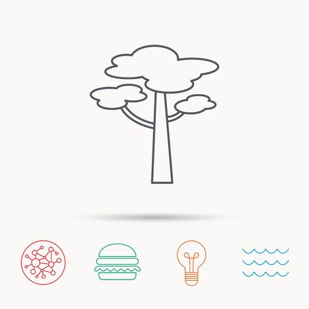 coma: Pine tree icon. Forest wood sign. Nature environment symbol. Global connect network, ocean wave and burger icons. Lightbulb lamp symbol.