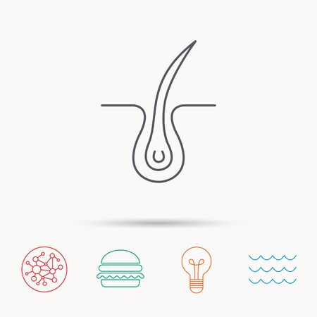 dermatology: Trichology skin icon. Dermatology hair sign. Global connect network, ocean wave and burger icons. Lightbulb lamp symbol.