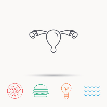 gynaecology: Uterus icon. Ovary sign. Gynecology health symbol. Global connect network, ocean wave and burger icons. Lightbulb lamp symbol.
