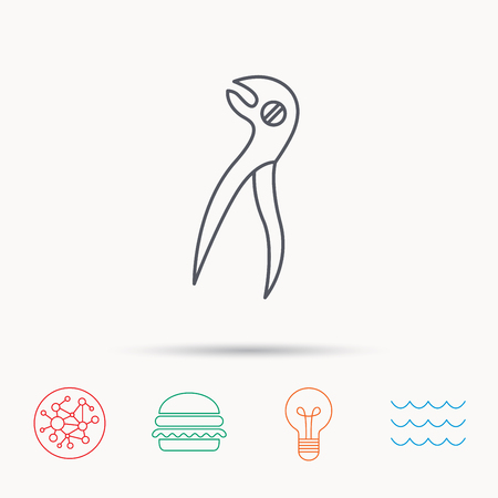 stomatological: Dental pliers icon. Stomatological forceps tool sign. Global connect network, ocean wave and burger icons. Lightbulb lamp symbol.