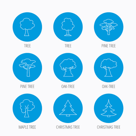 wilds: Pine tree, maple and oak icons. Christmas trees linear signs. Forest trees flat line icons. Blue circle buttons set. Linear icons. Illustration