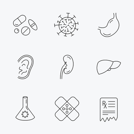 nephrology: Pills, medical plaster and prescription icons. Virus, stomach and liver linear signs. Ear, kidney and lab bublb icons. Linear black icons on white background.