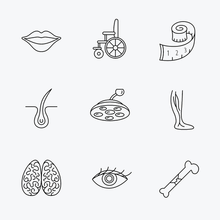 varicose veins: Eye, neurology brain and vein varicose icons. Wheelchair, bone fracture and trichology linear signs. Weight loss, lips and surgical lamp icons. Linear black icons on white background.