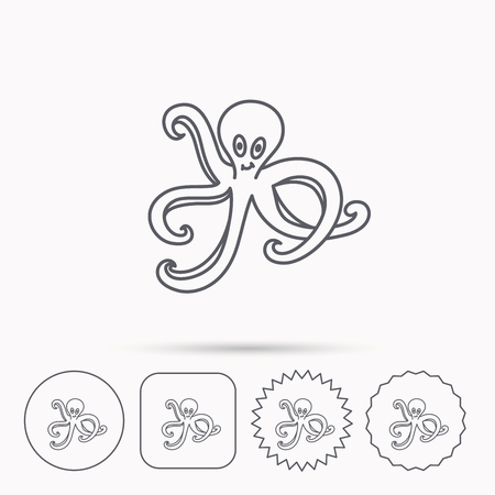 devilfish: Octopus icon. Ocean devilfish sign. Linear circle, square and star buttons with icons. Illustration
