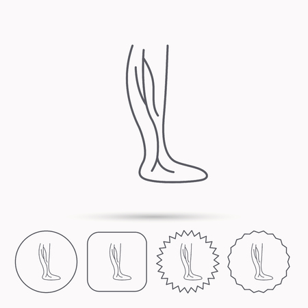 varicose veins: Phlebology icon. Leg veins sign. Varicose or thrombosis symbol. Linear circle, square and star buttons with icons.