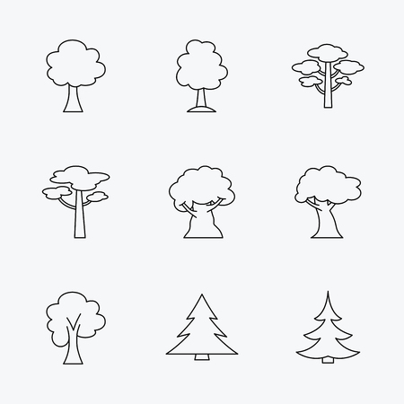 pinery: Pine tree, maple and oak icons. Christmas trees linear signs. Forest trees flat line icons. Linear black icons on white background. Illustration