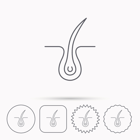 dermatology: Trichology skin icon. Dermatology hair sign. Linear circle, square and star buttons with icons.