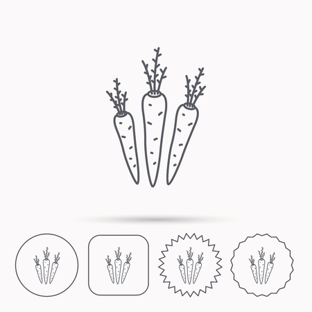 palatable: Carrots icon. Vegetarian food sign. Natural vegetables symbol. Linear circle, square and star buttons with icons. Illustration