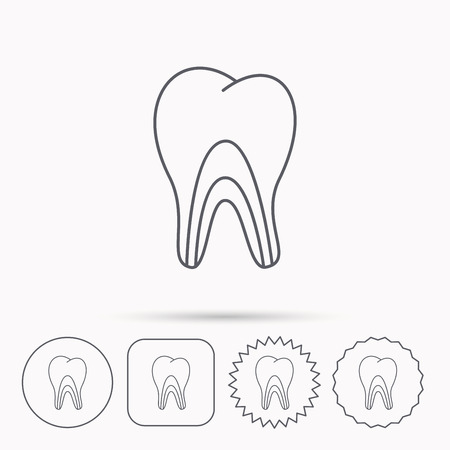 pulpitis: Dentinal tubules icon. Tooth medicine sign. Linear circle, square and star buttons with icons. Illustration