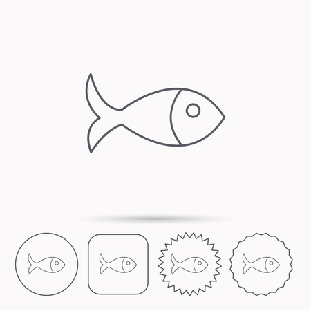 aquaculture: Fish icon. Seafood sign. Vegetarian food symbol. Linear circle, square and star buttons with icons. Illustration