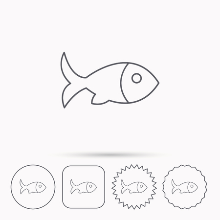 aquaculture: Fish with fin icon. Seafood sign. Vegetarian food symbol. Linear circle, square and star buttons with icons.