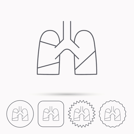 transplantation: Lungs icon. Transplantation organ sign. Pulmology symbol. Linear circle, square and star buttons with icons.