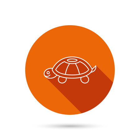 carapace: Turtle icon. Tortoise sign. Tortoiseshell symbol. Round orange web button with shadow.