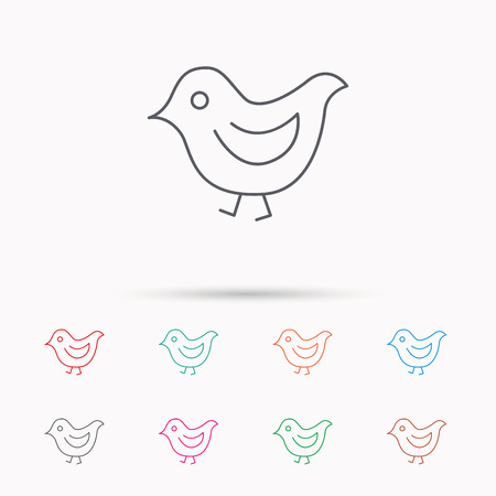 fowl: Bird icon. Chick with beak sign. Fowl with wings symbol. Linear icons on white background.