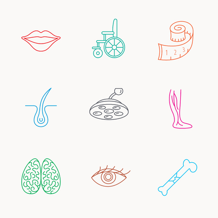 varicose veins: Eye, neurology brain and vein varicose icons. Wheelchair, bone fracture and trichology linear signs. Weight loss, lips and surgical lamp icons. Linear colored icons. Illustration