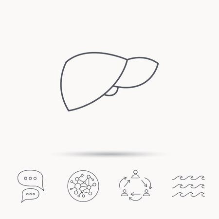 Liver icon. Transplantation organ sign. Medical hepathology symbol. Global connect network, ocean wave and chat dialog icons. Teamwork symbol. Illustration