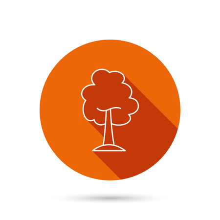 coma: Maple tree icon. Forest wood sign. Nature environment symbol. Round orange web button with shadow.