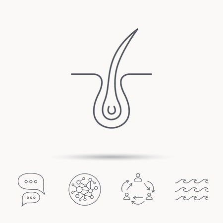 baldness: Trichology skin icon. Dermatology hair sign. Global connect network, ocean wave and chat dialog icons. Teamwork symbol. Illustration