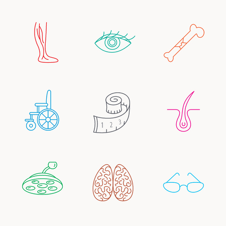 varicose veins: Vein varicose, neurology and trichology icons. Surgical lamp, glasses and eye linear signs. Bone fracture, wheelchair and weight loss icons. Linear colored icons. Illustration
